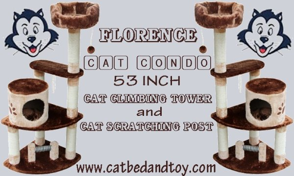 Florence Cat Condo 53 Inch Cat climbing Tower and Cat Scratching Post.