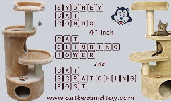 Sydney Cat Condo 41 Inch Cat Climbing Tower and Cat Scratching Post.